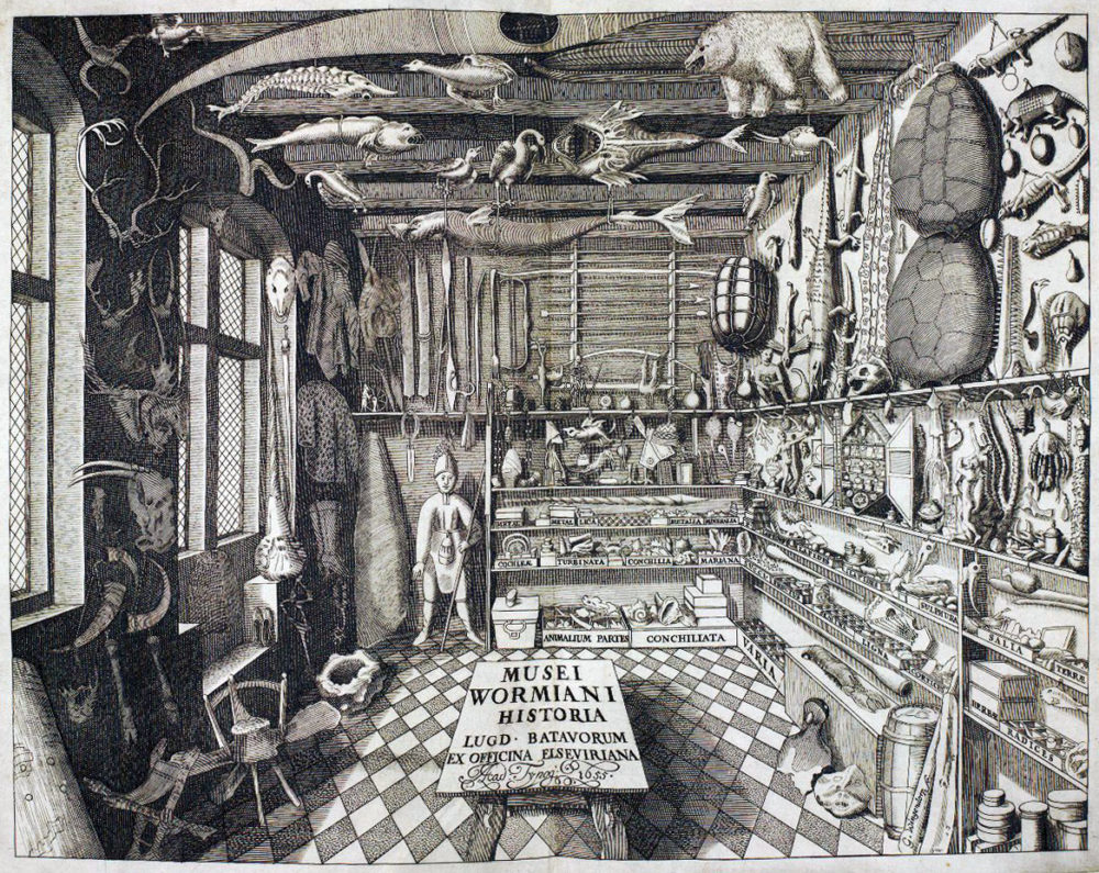 Read more about the article Wunderkammer